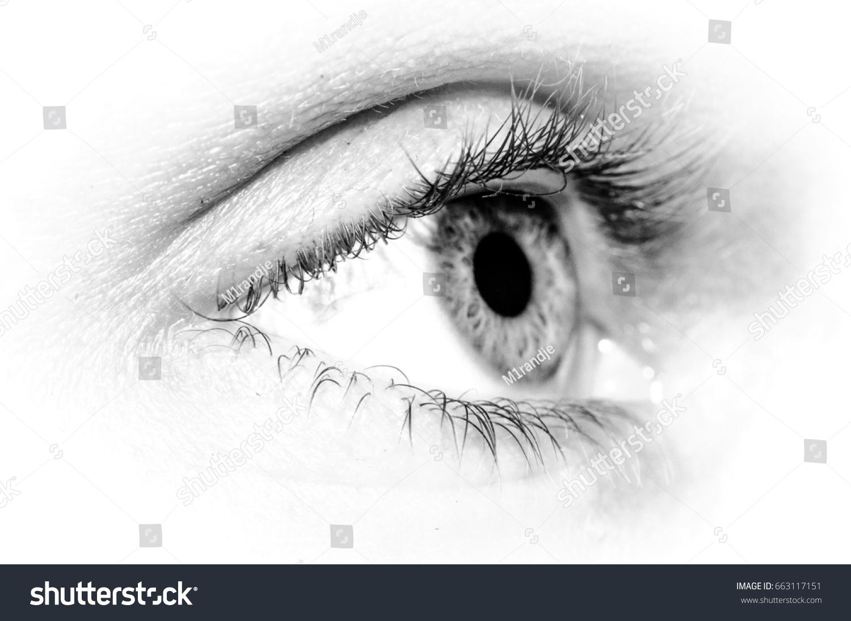Eye high key black white stock photo edit now 663117151