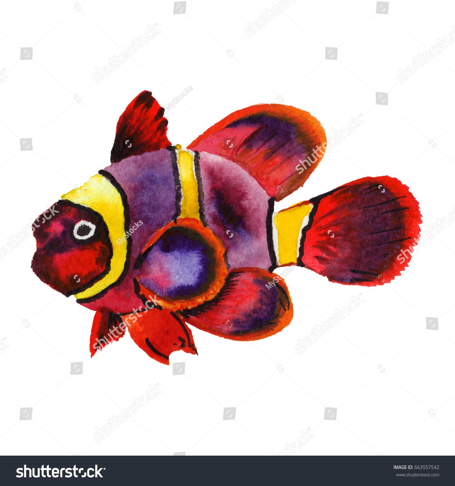 Watercolor Aquatic Underwater Colorful Tropical Fish Stock ...