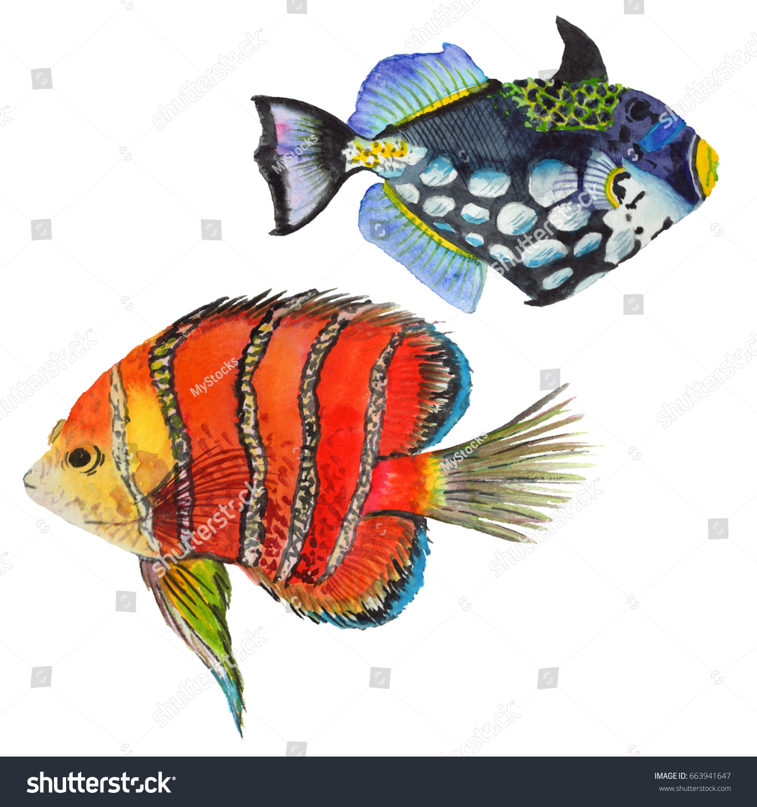 Watercolor Aquatic Underwater Colorful Tropical Fish Stock ...
