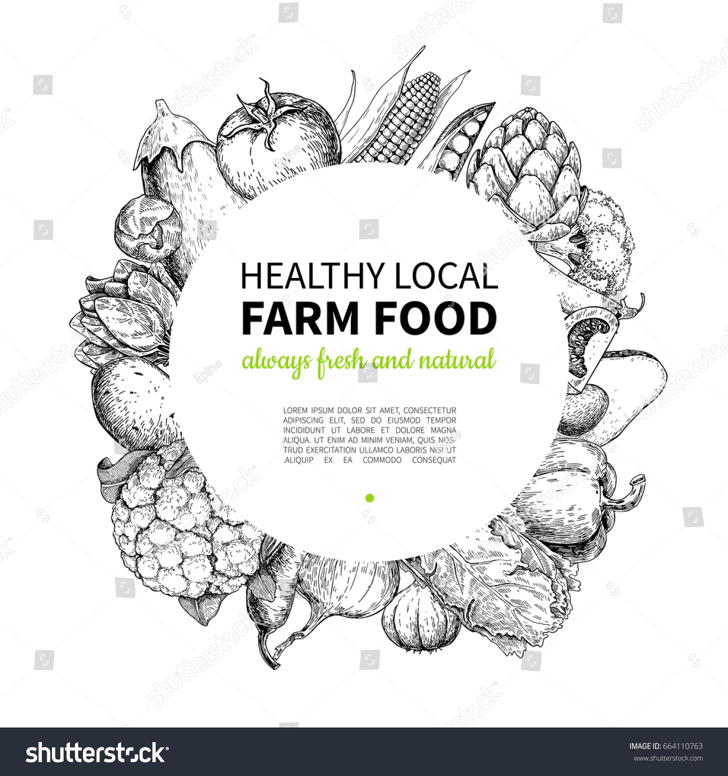 Vegetable Hand Drawn Vintage Vector Frame Vectores En Stock ...