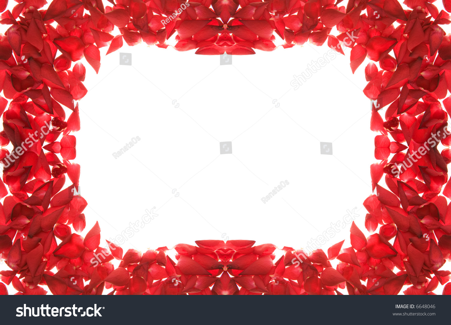 Red gift bows border with clipping path for easy background removing - Red Rose Petals Frame Isolated On White