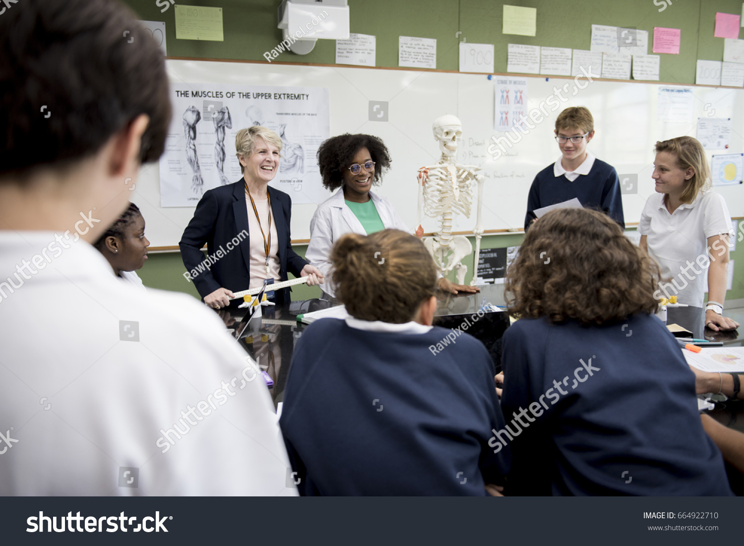 Biology Teacher Teaching Anatomy Diverse High Stock Photo (Royalty ...