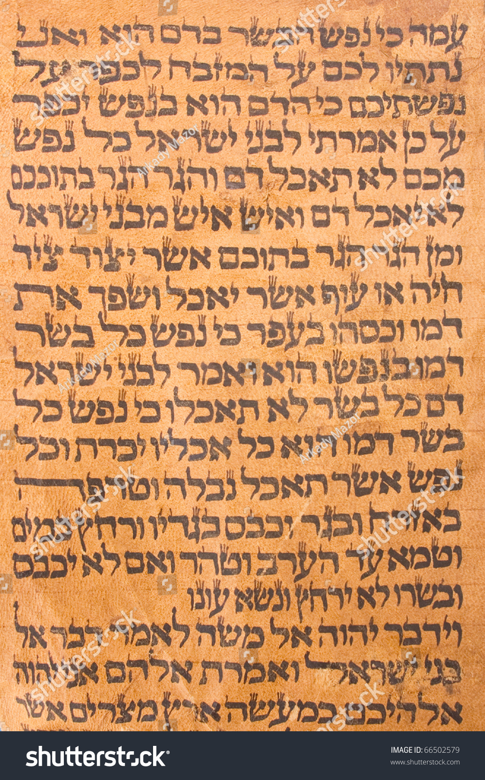 english tanakh essay Answers to all toefl essay questions 518 pages learning to read biblical hebrew, a biblical hebrew study group - ed's journal by pastor edw hebrew and english side-by side this.
