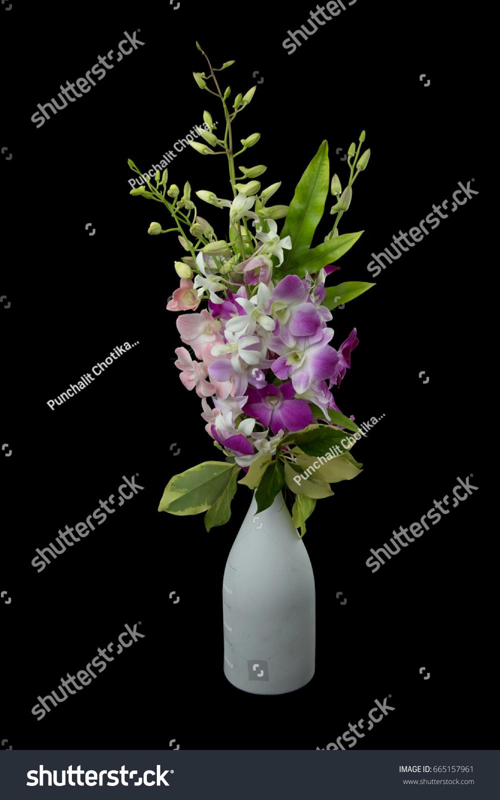 Assorted dendrobium orchid flower bouquet brunch stock photo edit assorted dendrobium orchid flower bouquet brunch in a vase on black background izmirmasajfo
