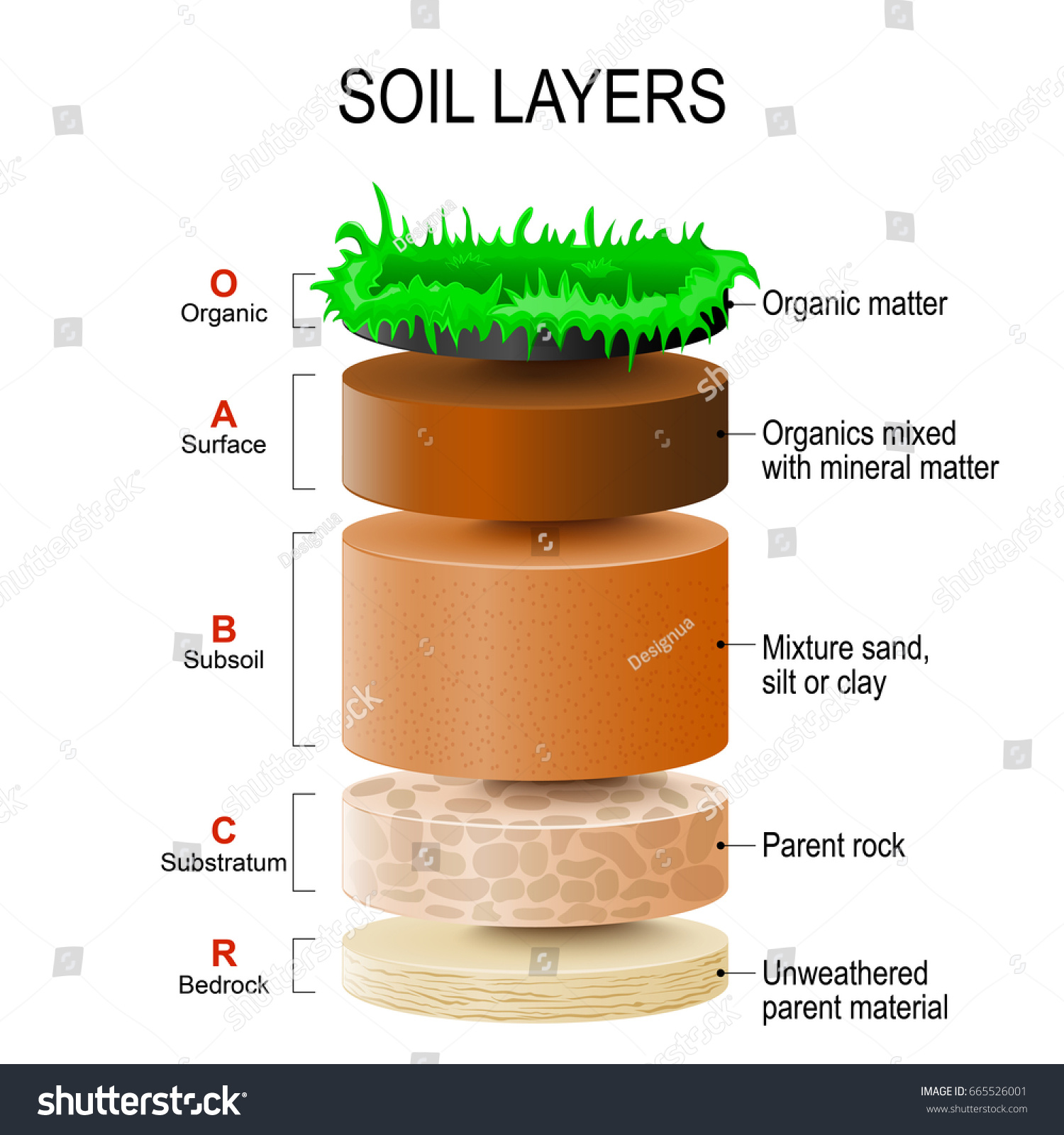 Soil layers soil formation soil horizons stock for Soil forming minerals