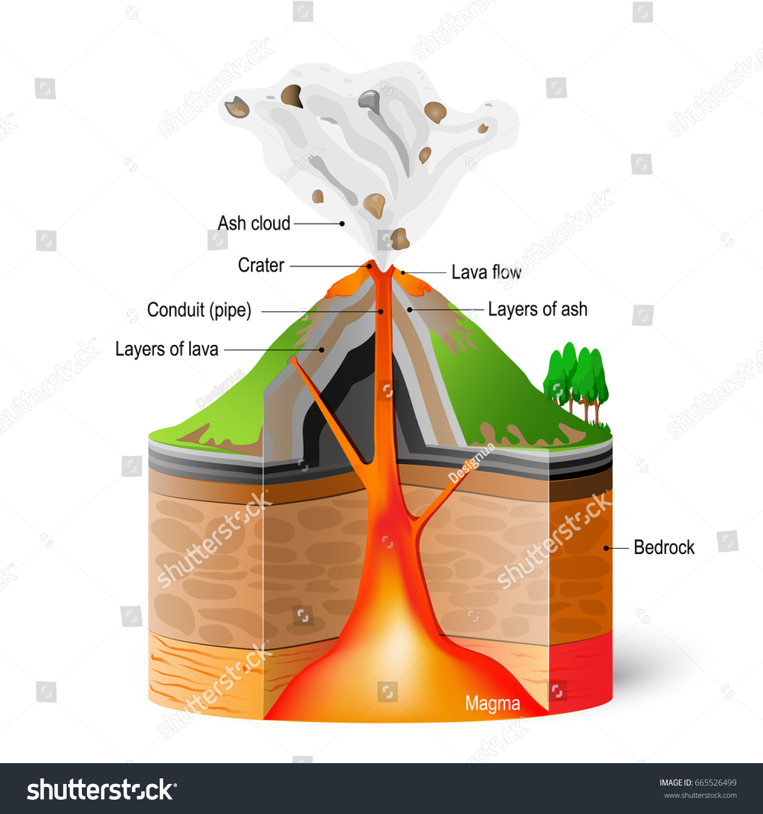 Crosssection Ofa Volcano Eruption Scheme On Stock Illustration Diagram With Labels Cross Section White Background