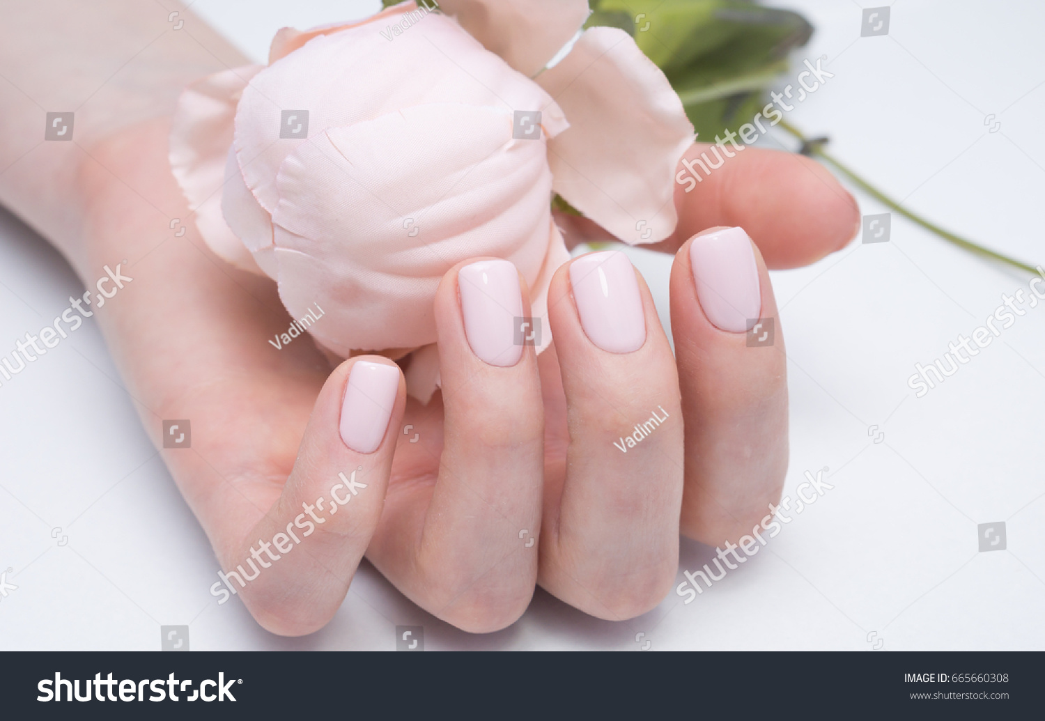 Beautiful Manicure Nail Art Natural Nails Stock Photo (Download Now ...