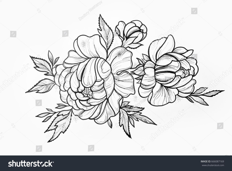 Картинки натюрморт букет розы пионы на рабочий стол  Цветы
