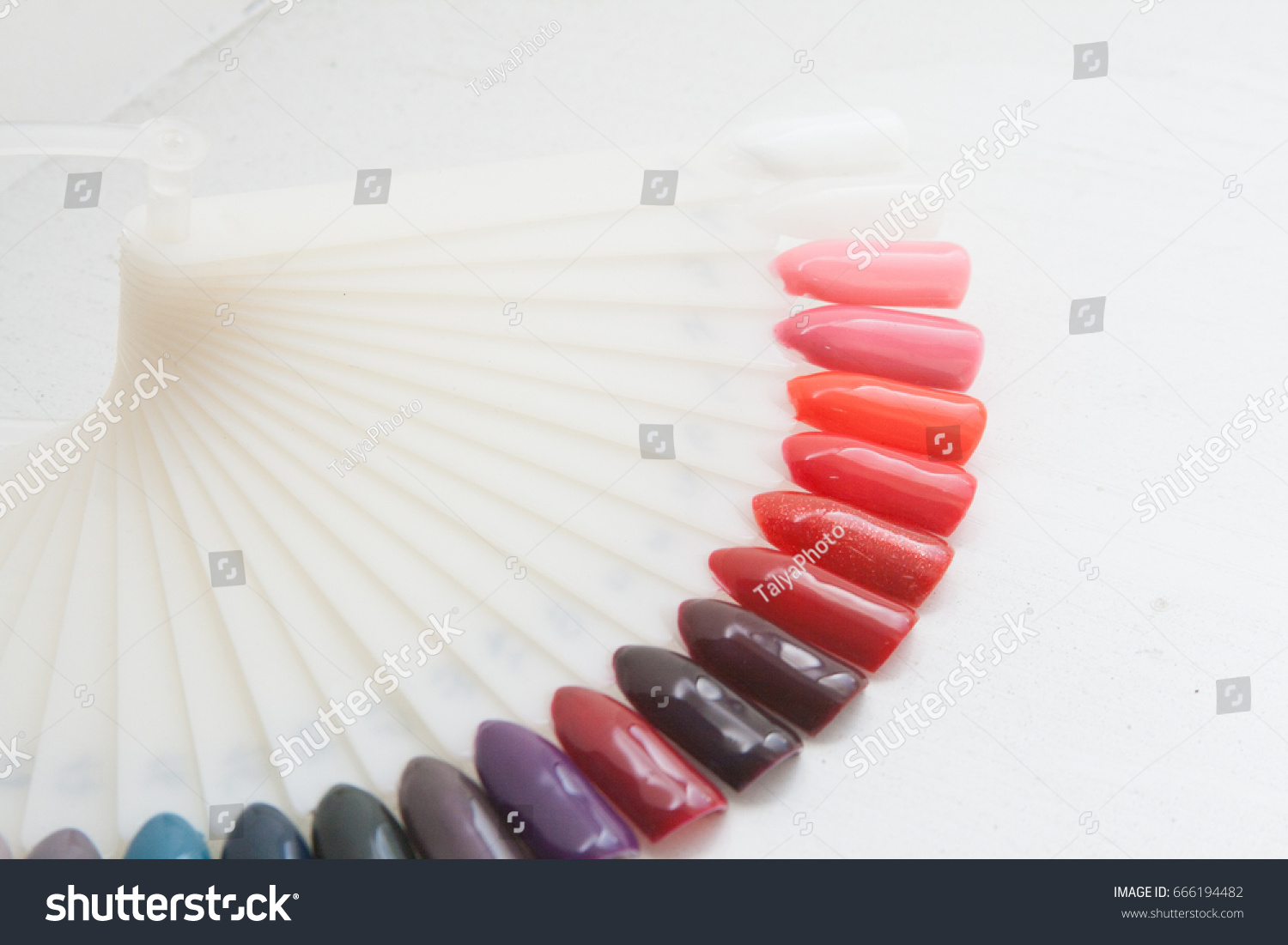 Nail Color Palette Stock Photo (Safe to Use) 666194482 - Shutterstock