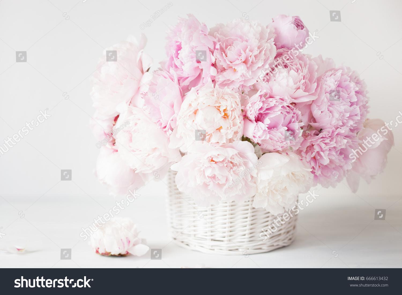 Beautiful pink peony flowers bouquet vase stock photo royalty free beautiful pink peony flowers bouquet in vase izmirmasajfo Images