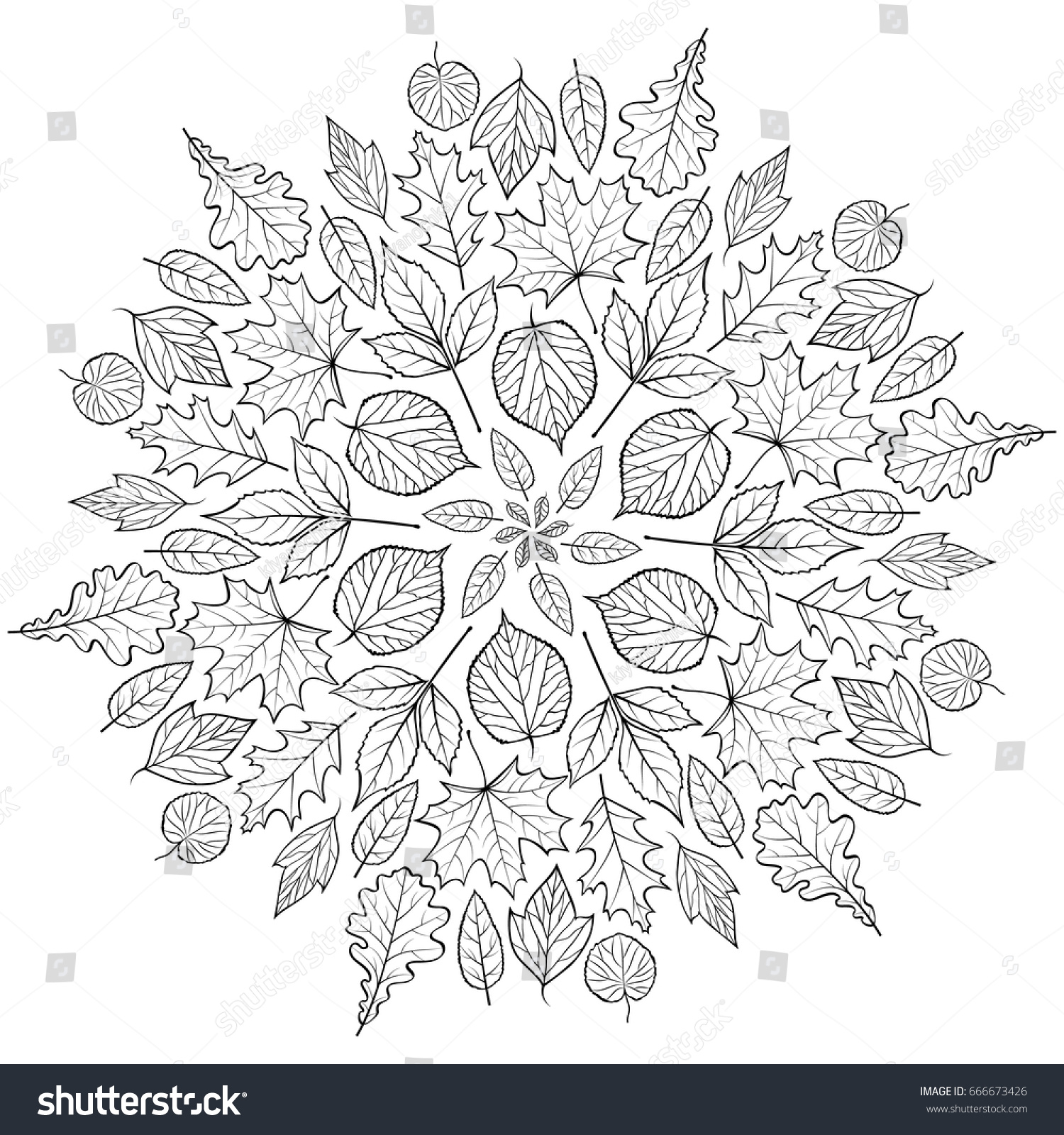 autumn mandala autumn leaves on white stock vector 666673426