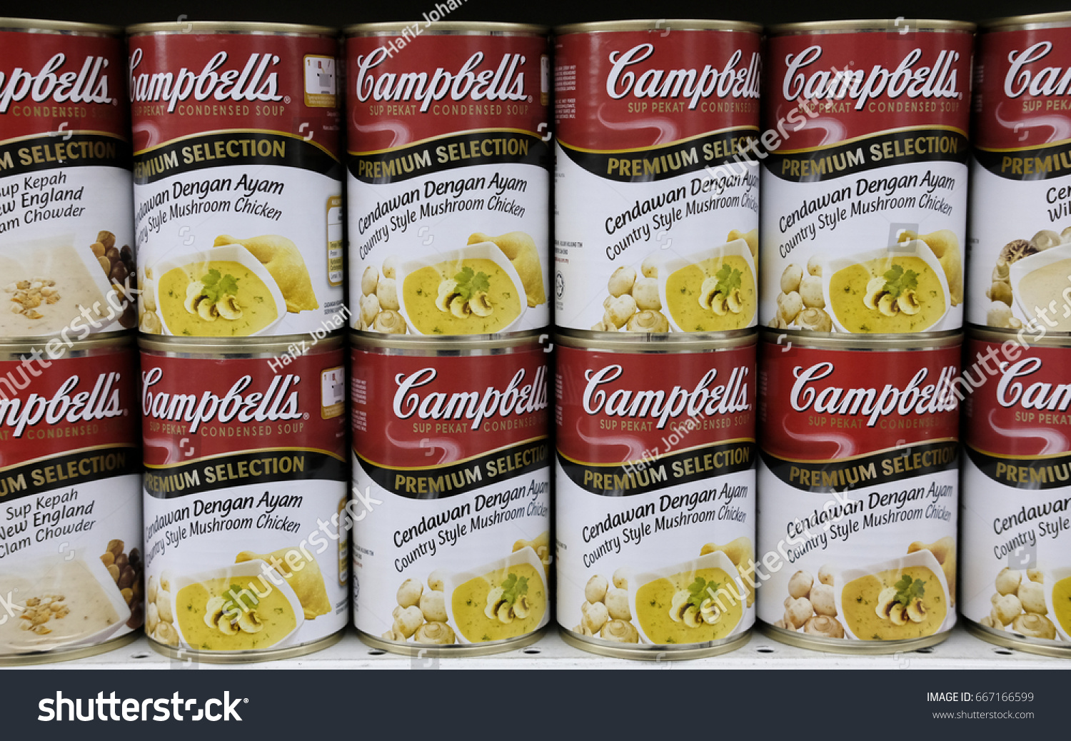 the company overview of cambell soup company Valuation of campbell soup company susan price december 11, 2008 dr jacqueline garner finance 601 business description & brief history campbell soup company is a global manufacturer of high quality soup, beverage, confectionery, and prepared food products.