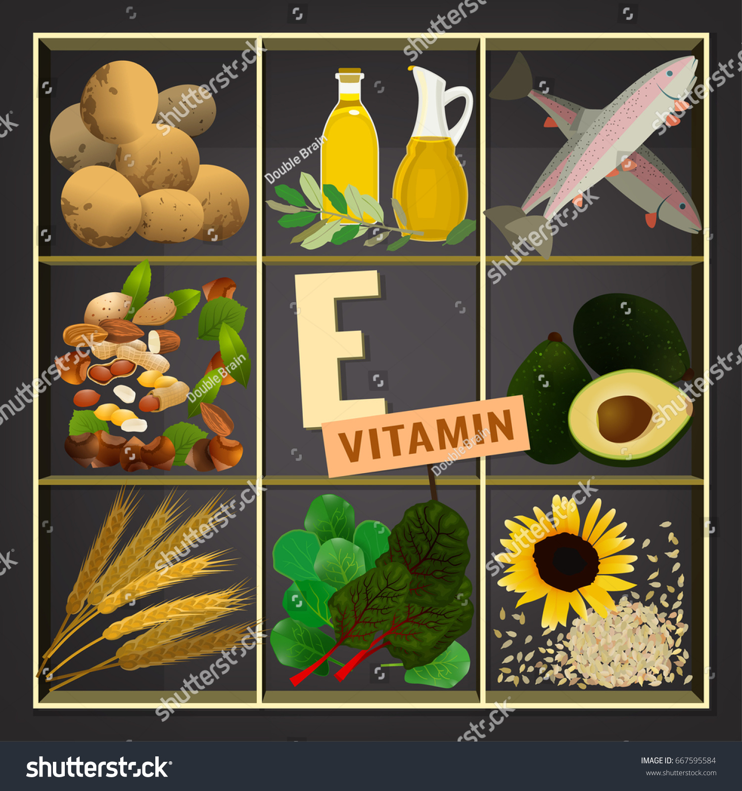 Vitamin e vector illustration foods containing stock vector 2018 vitamin e vector illustration foods containing vitamin e on a dark grey background source workwithnaturefo
