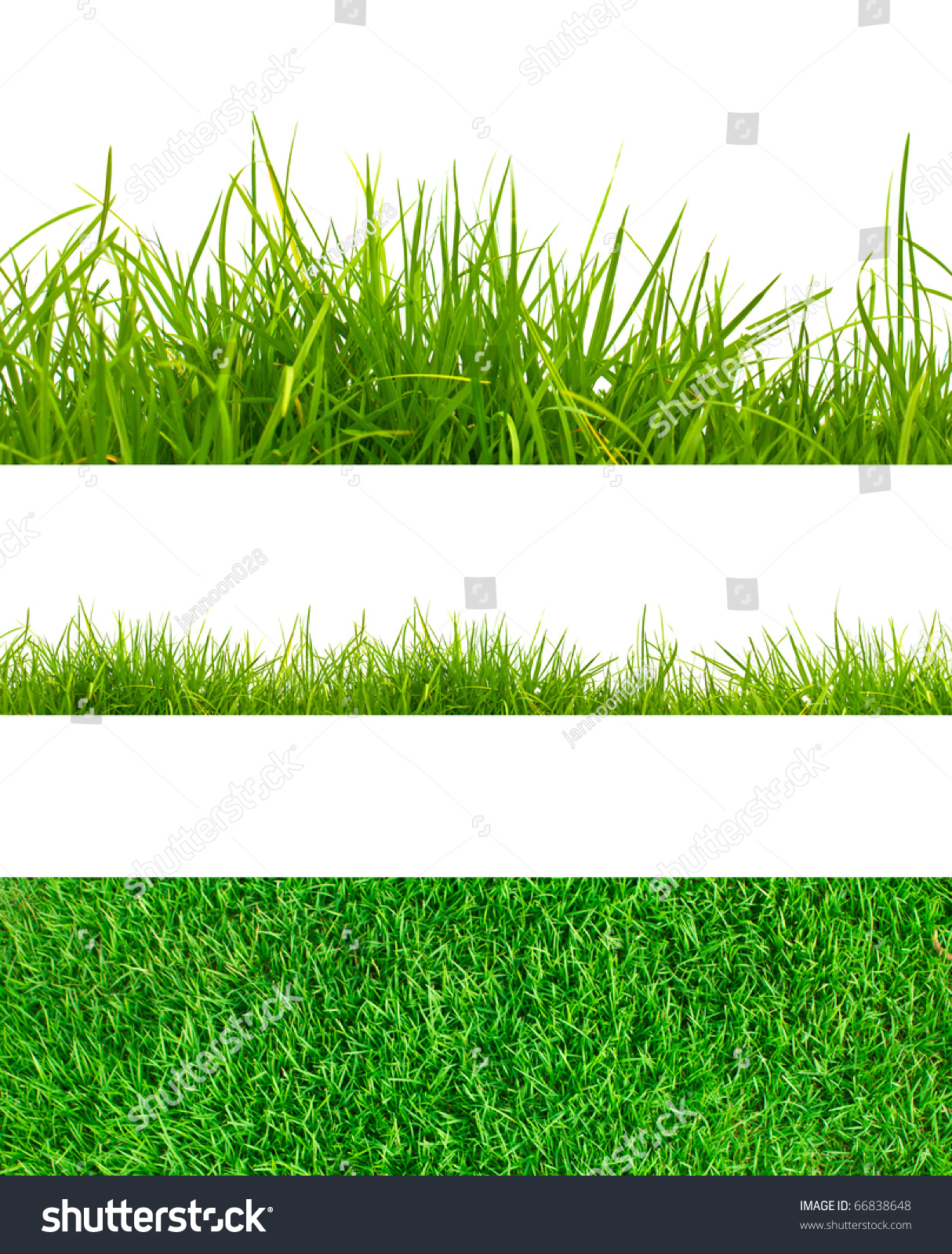 3 Backgrounds Fresh Spring Green Grass Stock Photo ...
