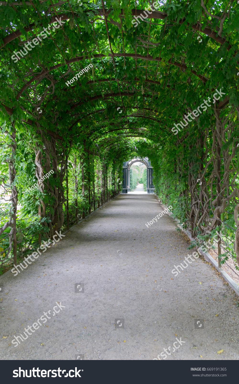 Garden Arc Of The Green Plants