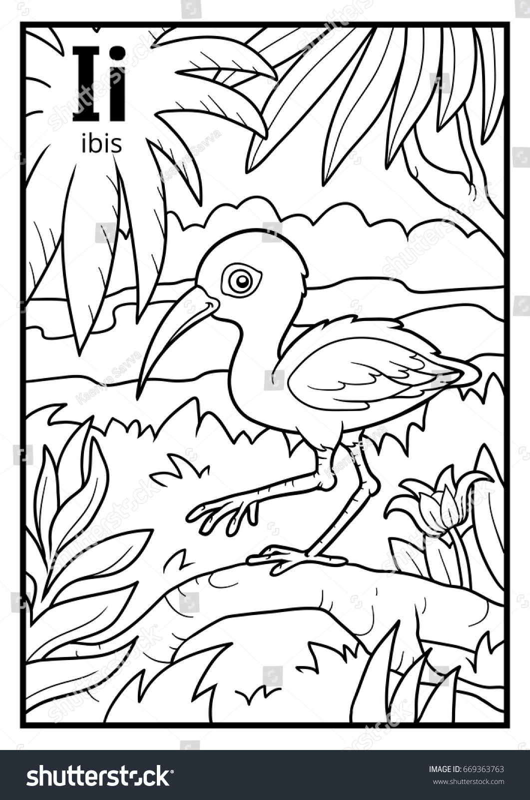Coloring Book For Children Colorless Alphabet Letter I Ibis