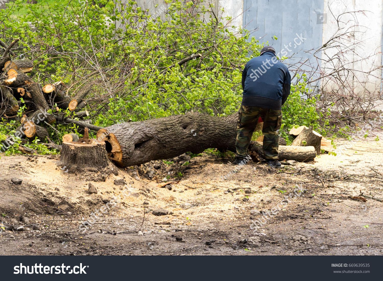 Uprooting stumps 93