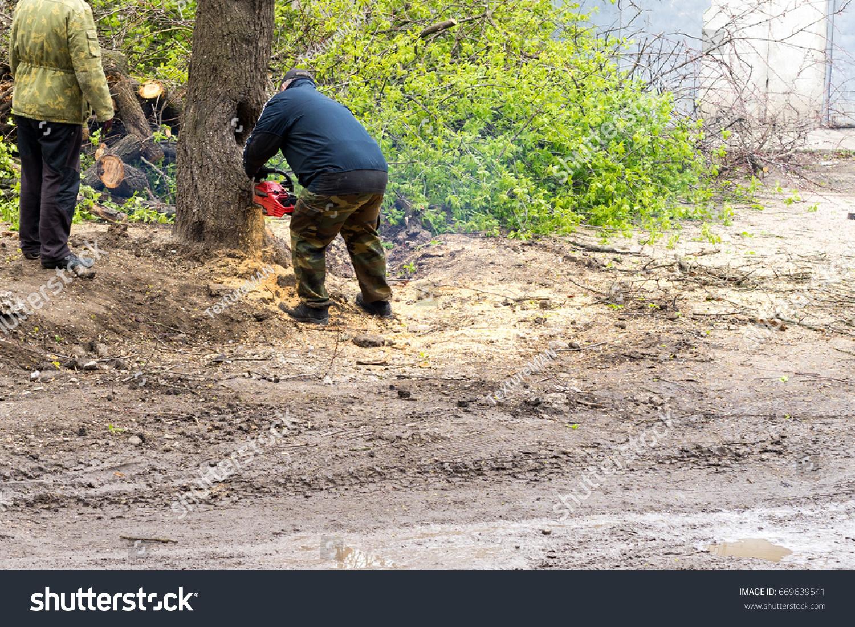 Uprooting stumps 84