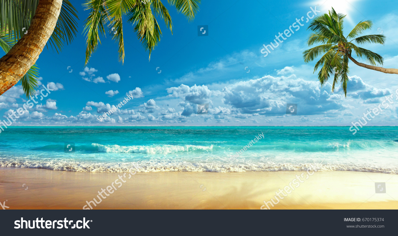 Shore of the ocean