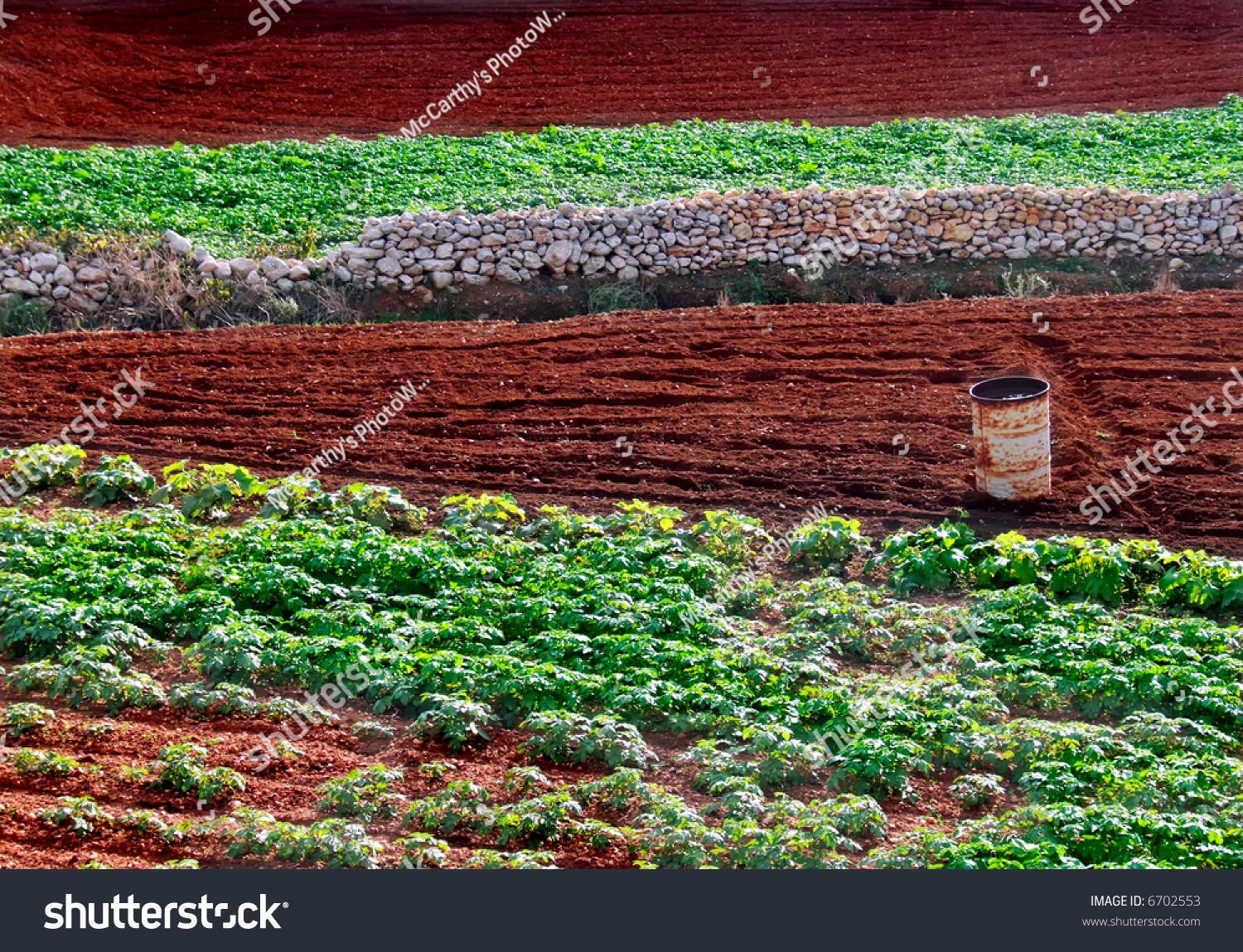 Agriculture imagery rich soil and crops in the for Rich soil definition