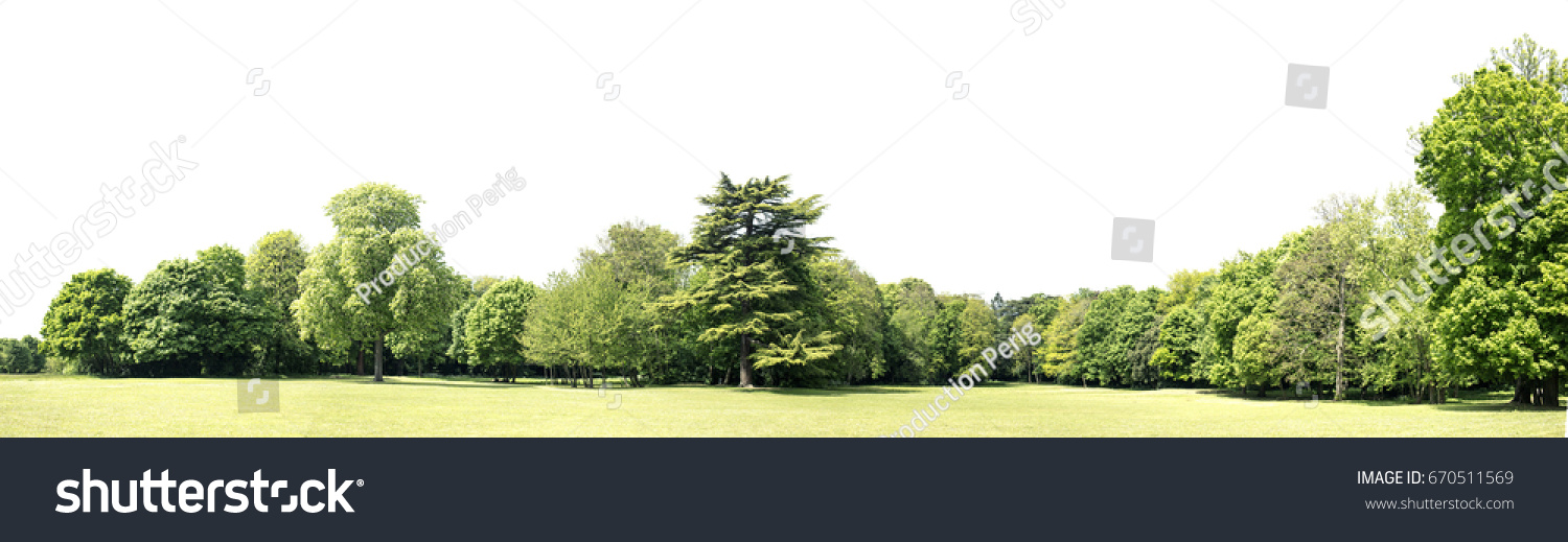 View of a High definition Treeline isolated on a white background #670511569 - 123PhotoFree.com