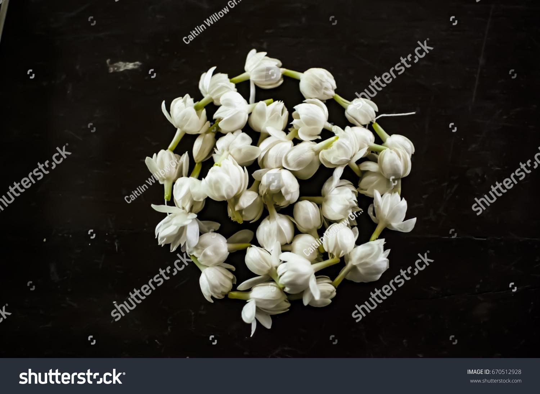 Single Strand Garland Jasmine Flowers Bought Stock Photo Edit Now