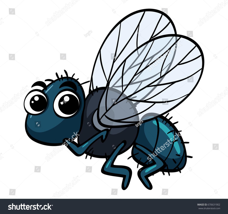 Housefly Flying On White Background Illustration Stock Vector ...