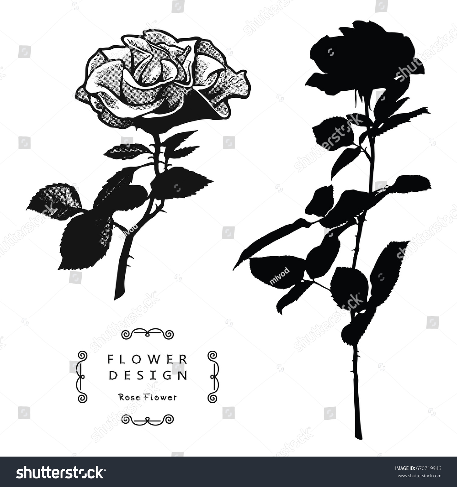 rose flowers vector silhouette isolated on white background the result of black and white auto