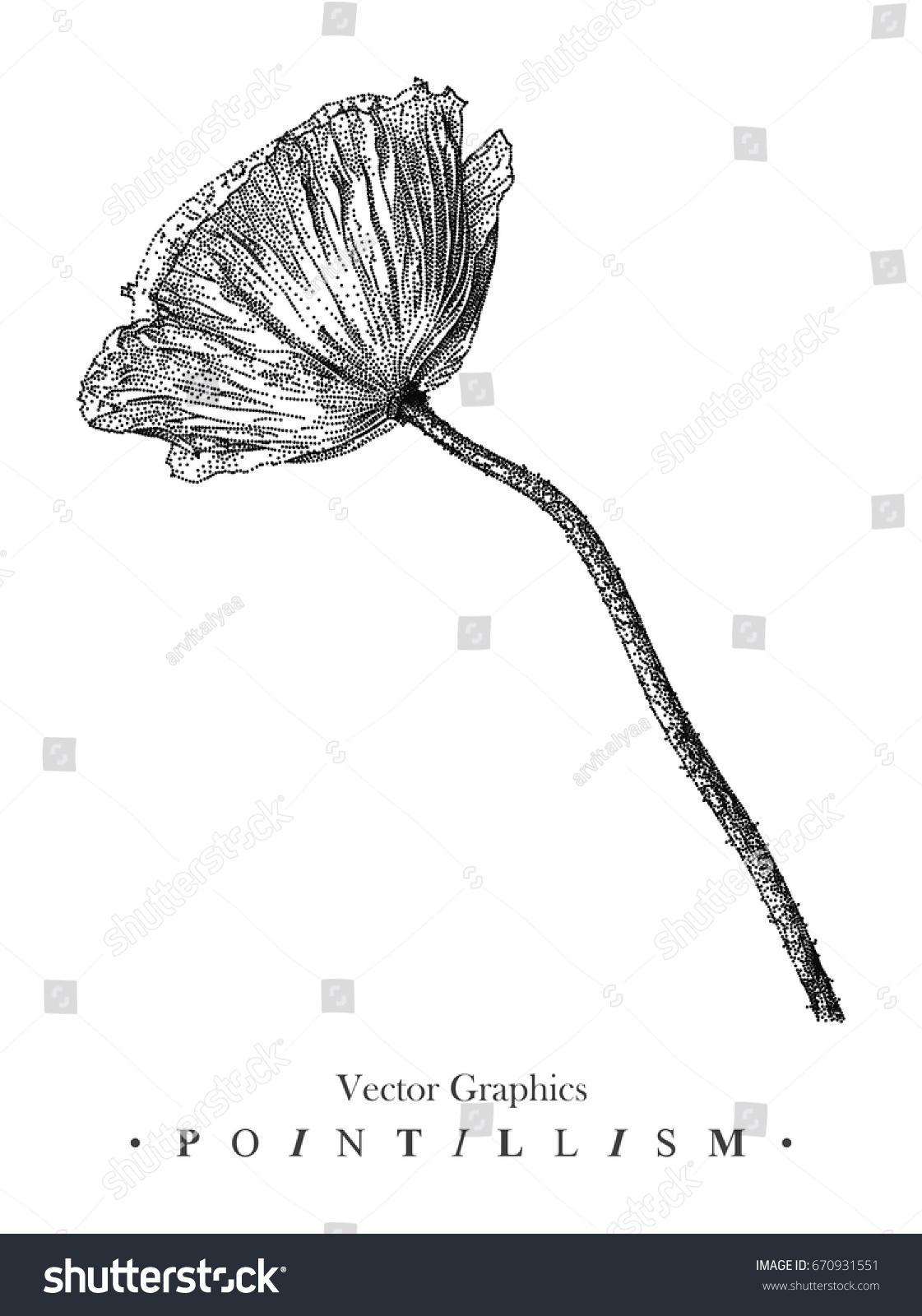 Vector Illustration Poppy Flower Drawn By Stock Vector 670931551