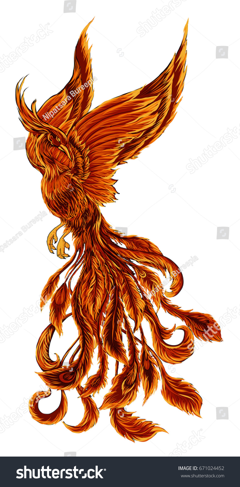 phoenix fire bird illustration character designhand stock vector 671024452 shutterstock. Black Bedroom Furniture Sets. Home Design Ideas