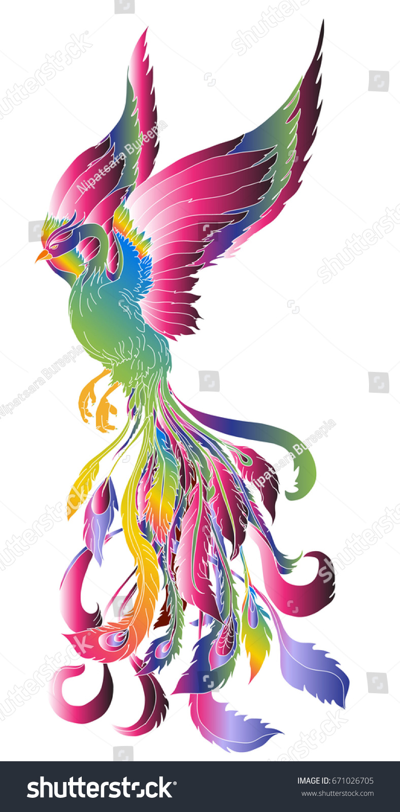 Colorful phoenix tattoo designs - Hand Drawn Colorful Fashion Of Phoenix Tattoo Phoenix Fire Bird Illustration And Character Design