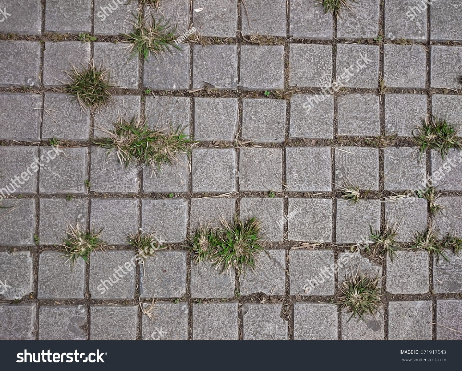 Square grey tiles on floor green stock photo 671917543 shutterstock square grey tiles on the floor with green grass and moss in the rifts rusty dailygadgetfo Images