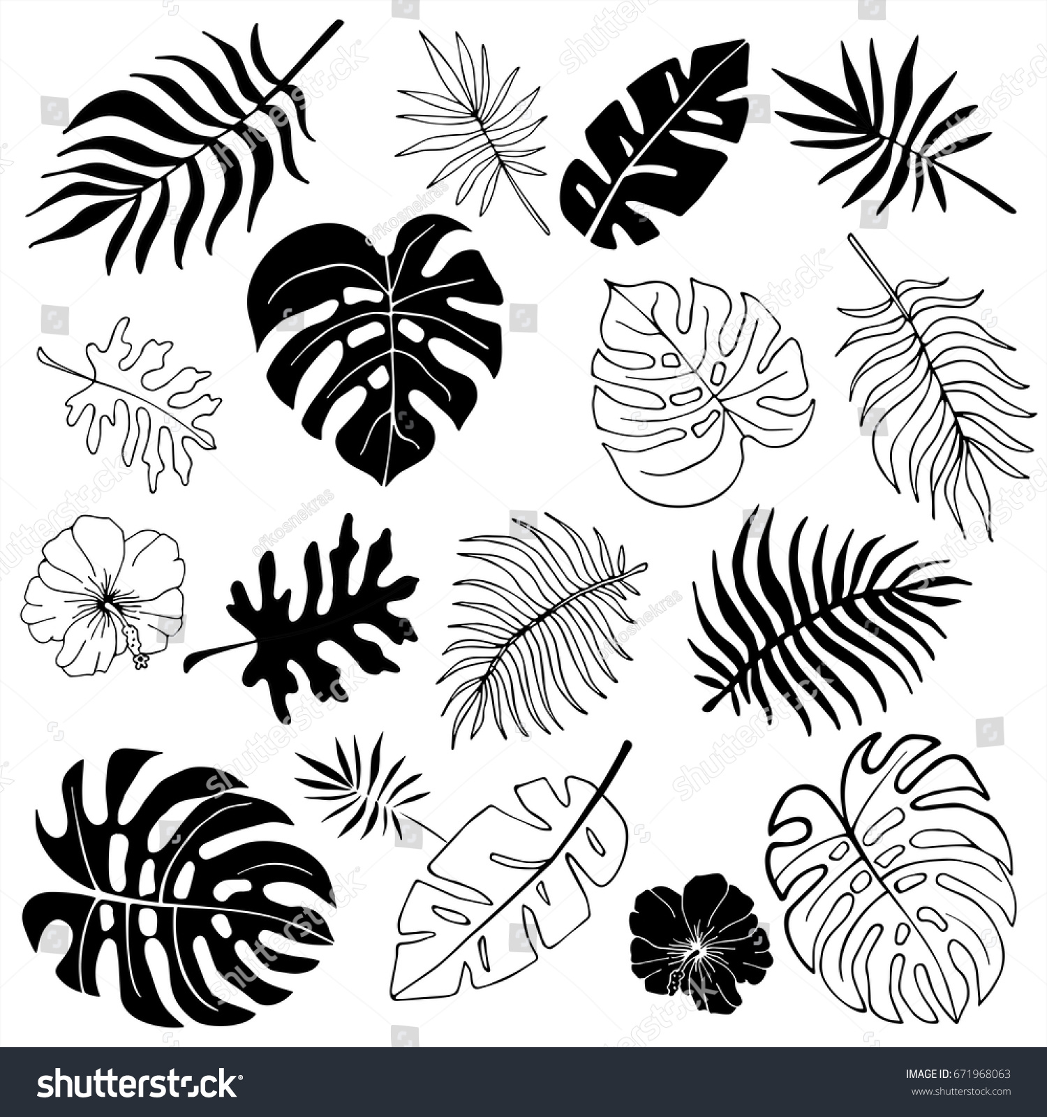 Isolated Silhouettes Tropical Palm Leaves Jungle Stock Vector ...