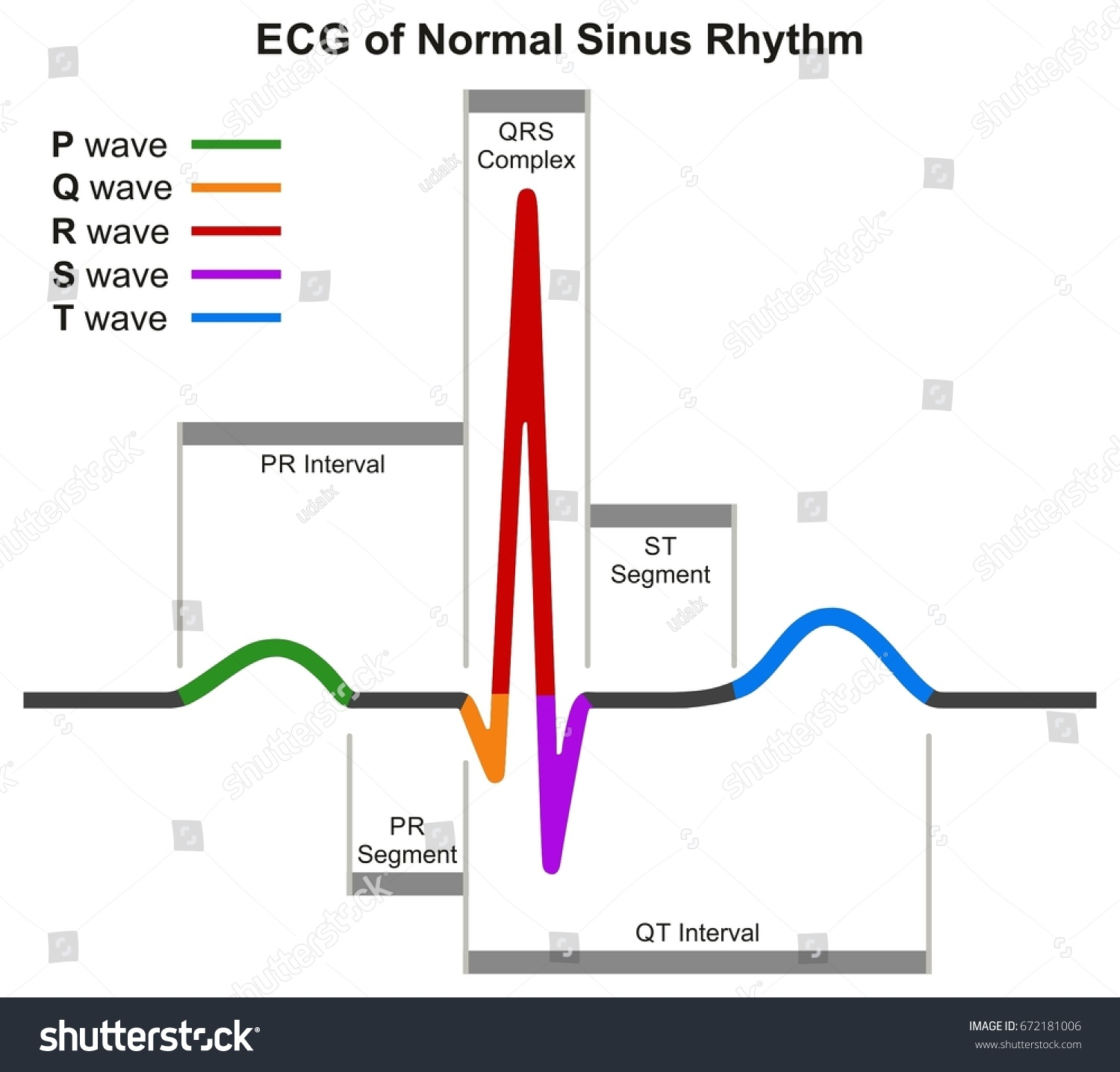 Music Beat Diagram Another Blog About Wiring Marlette Home Diagrams Ecg Normal Sinus Rhythm Infographic Stock
