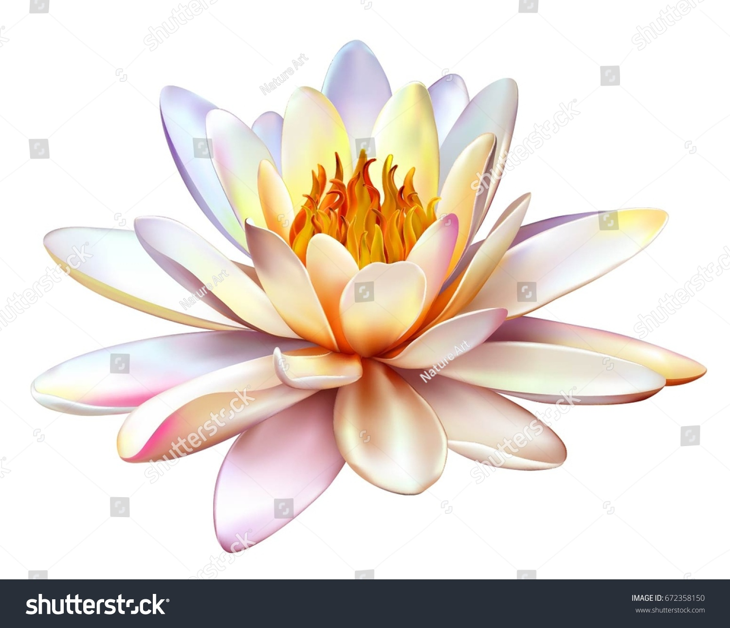 Vector Realistic Illustration Lotus Flower Isolated Stock Vector