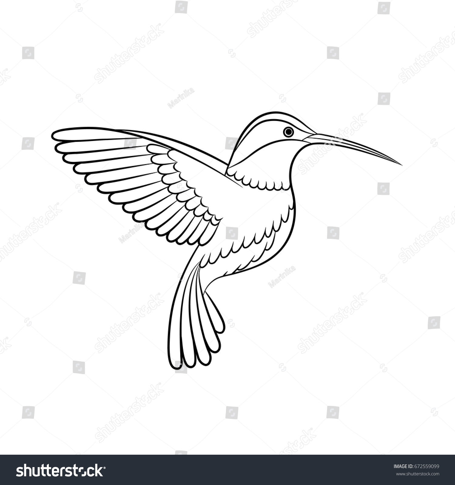 outline drawing hummingbird vector isolated stock vector royalty