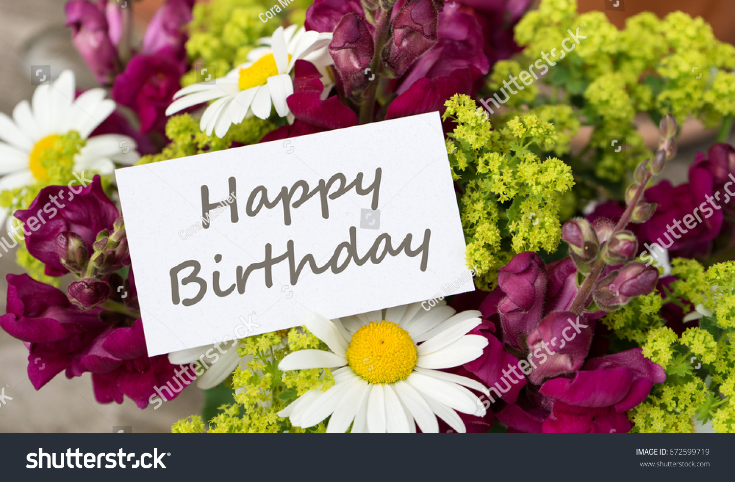 Birthday Card Snapdragons Daisies Birthday Greetings Stock Photo