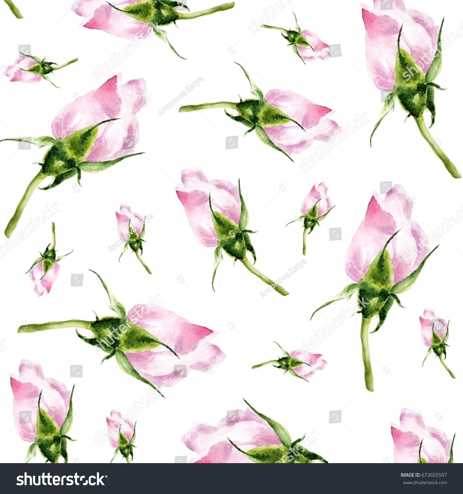 Pink Rose Bud Watercolor Illustration Pattern Stock Illustration