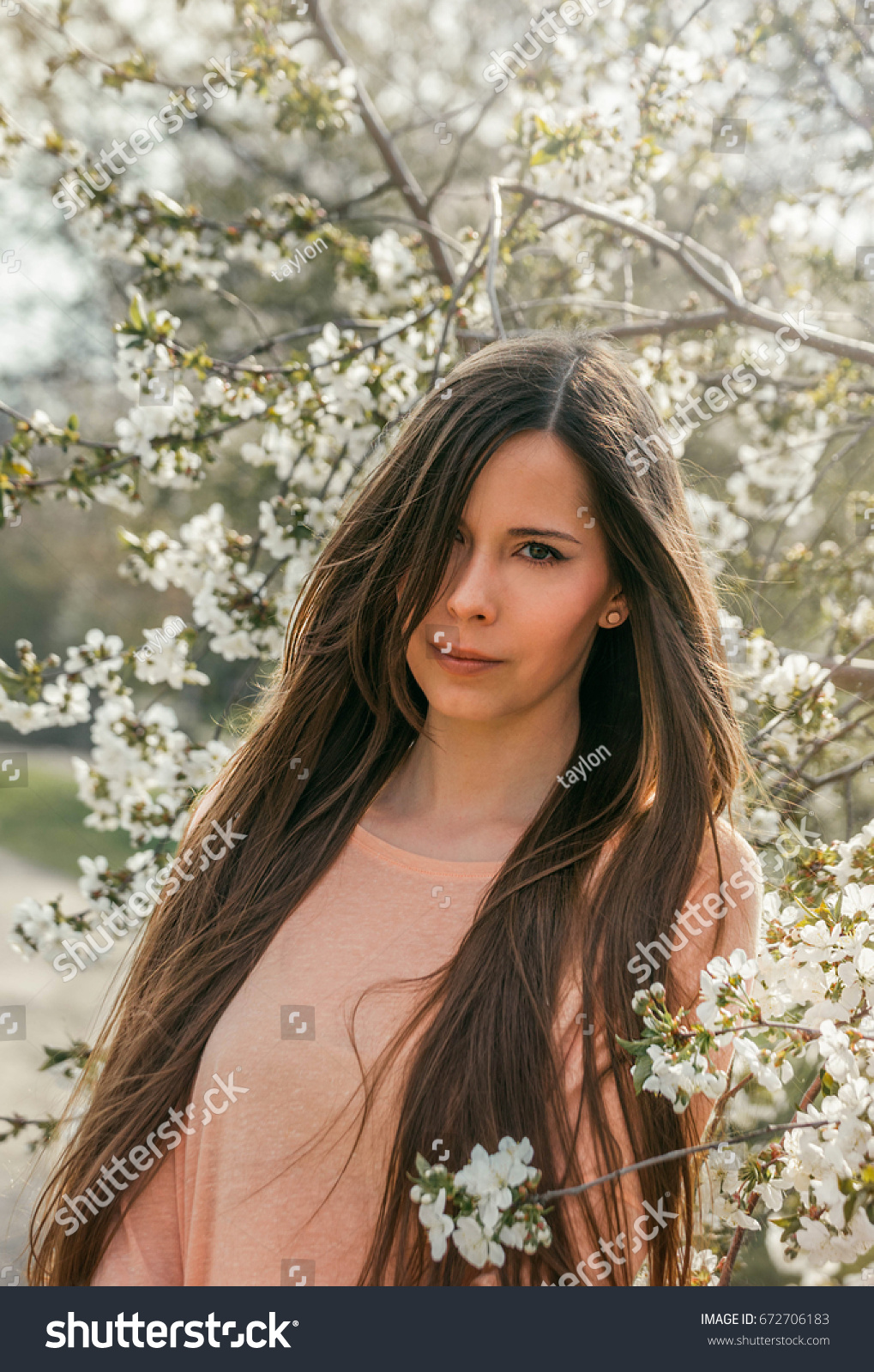 Beautiful Young Brunette Girl Blooming Cherry Stock Photo (Edit Now ...