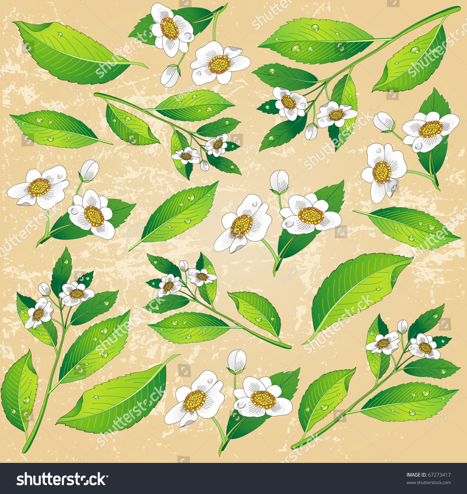 Background Painted Green Tea Leaves White Stock Vector Royalty Free