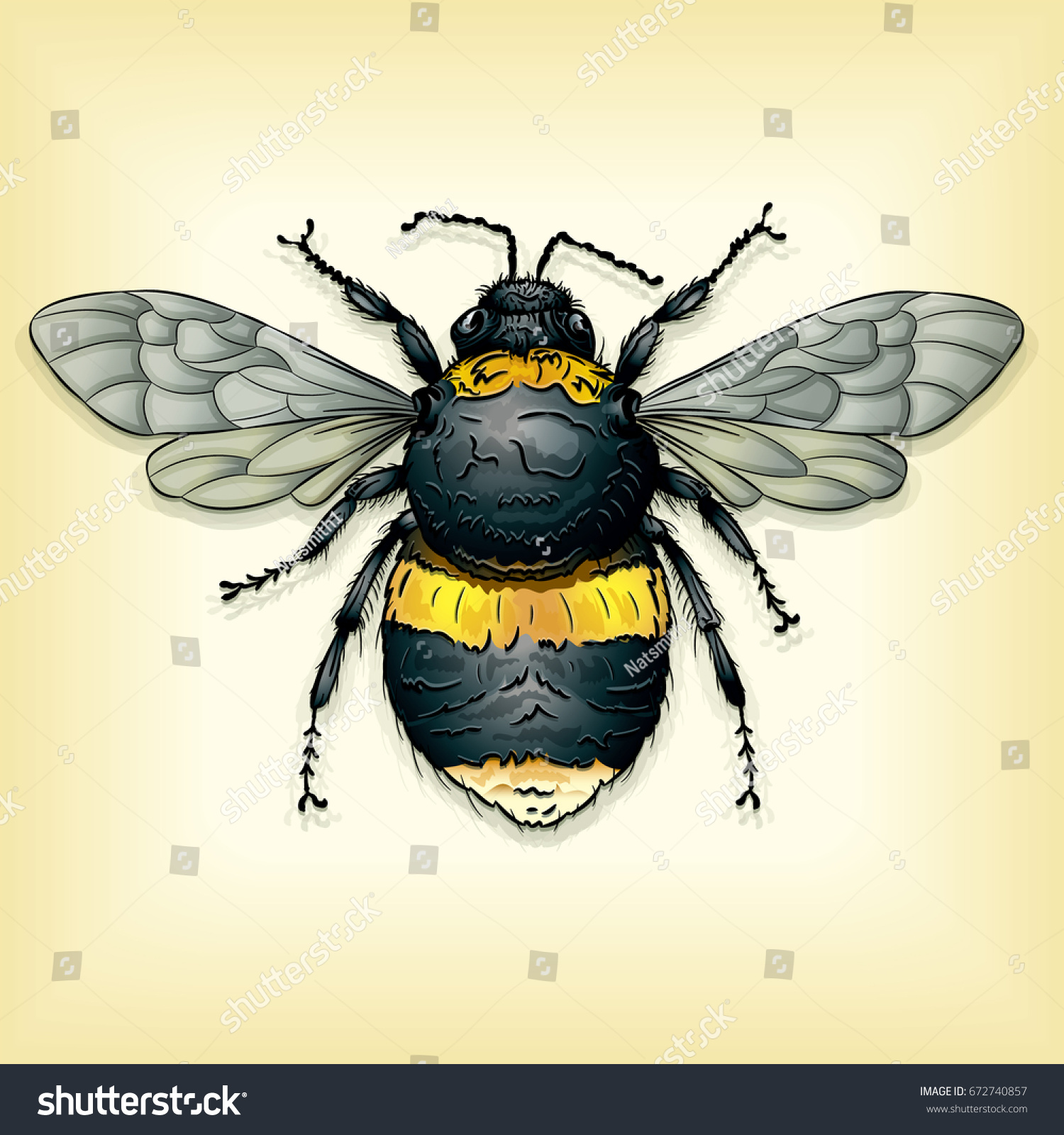 Vector Drawing Bumble Bee Easy Edit Stock Vector Royalty Free