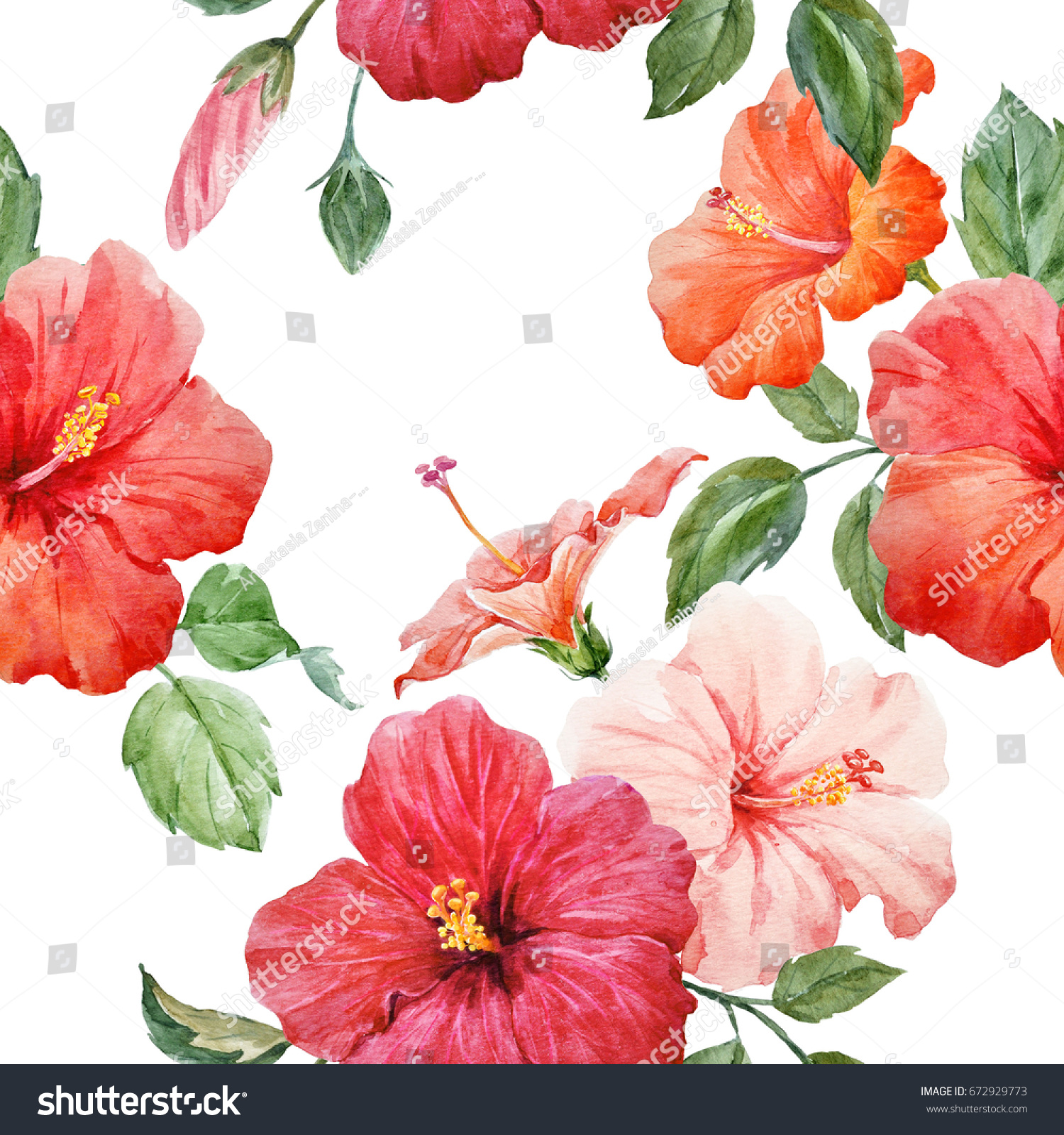 Watercolor tropical flower red and orange hibiscus with leaves and watercolor tropical flower red and orange hibiscus with leaves and bud hawaiian flower composition set of isolated plant objects ez canvas izmirmasajfo