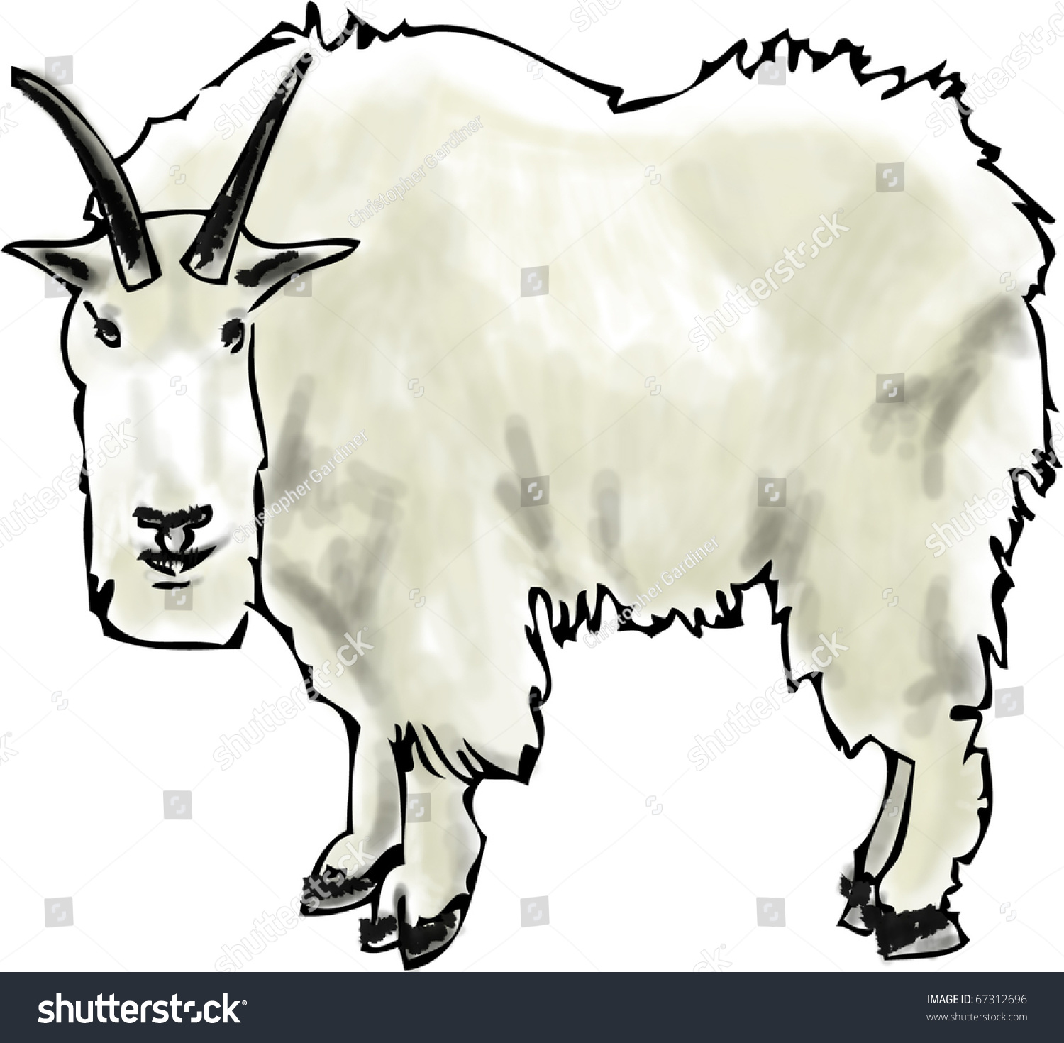 Rocky Mountain Goat Clip Art Hand drawn mountain goat stock vector ...