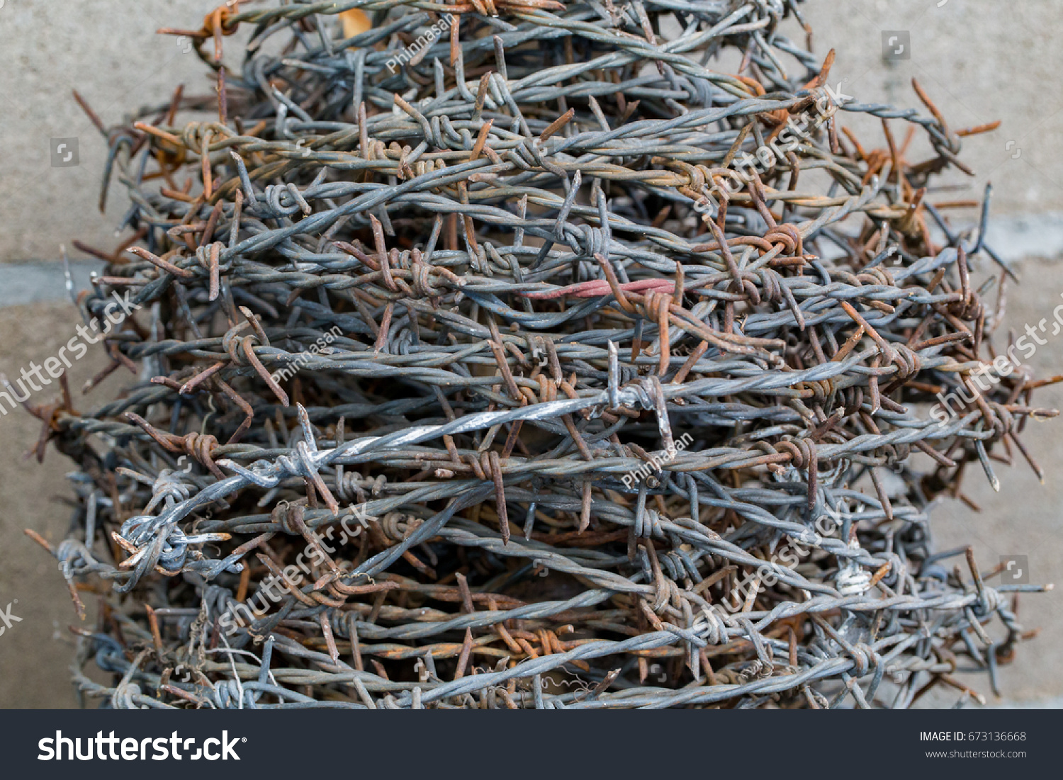 Old Barbed Wire Round Roll Rusted Stock Photo (Royalty Free ...