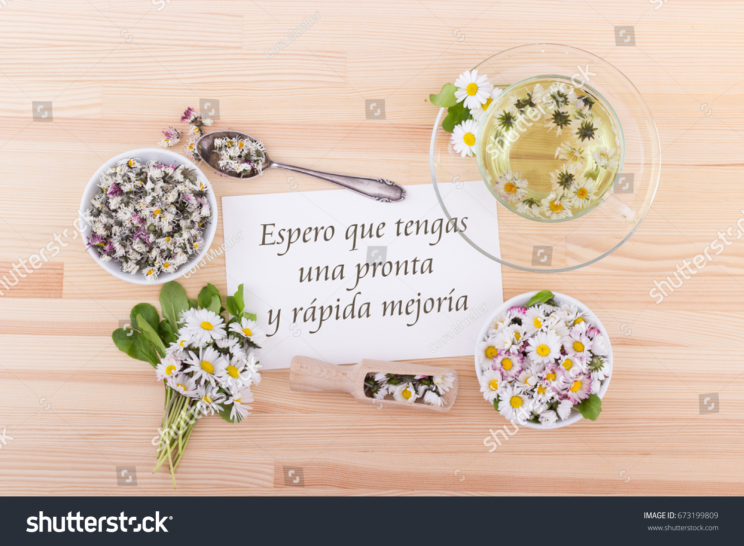 Greeting Card Spanish Text Hope Your Stock Photo Royalty Free