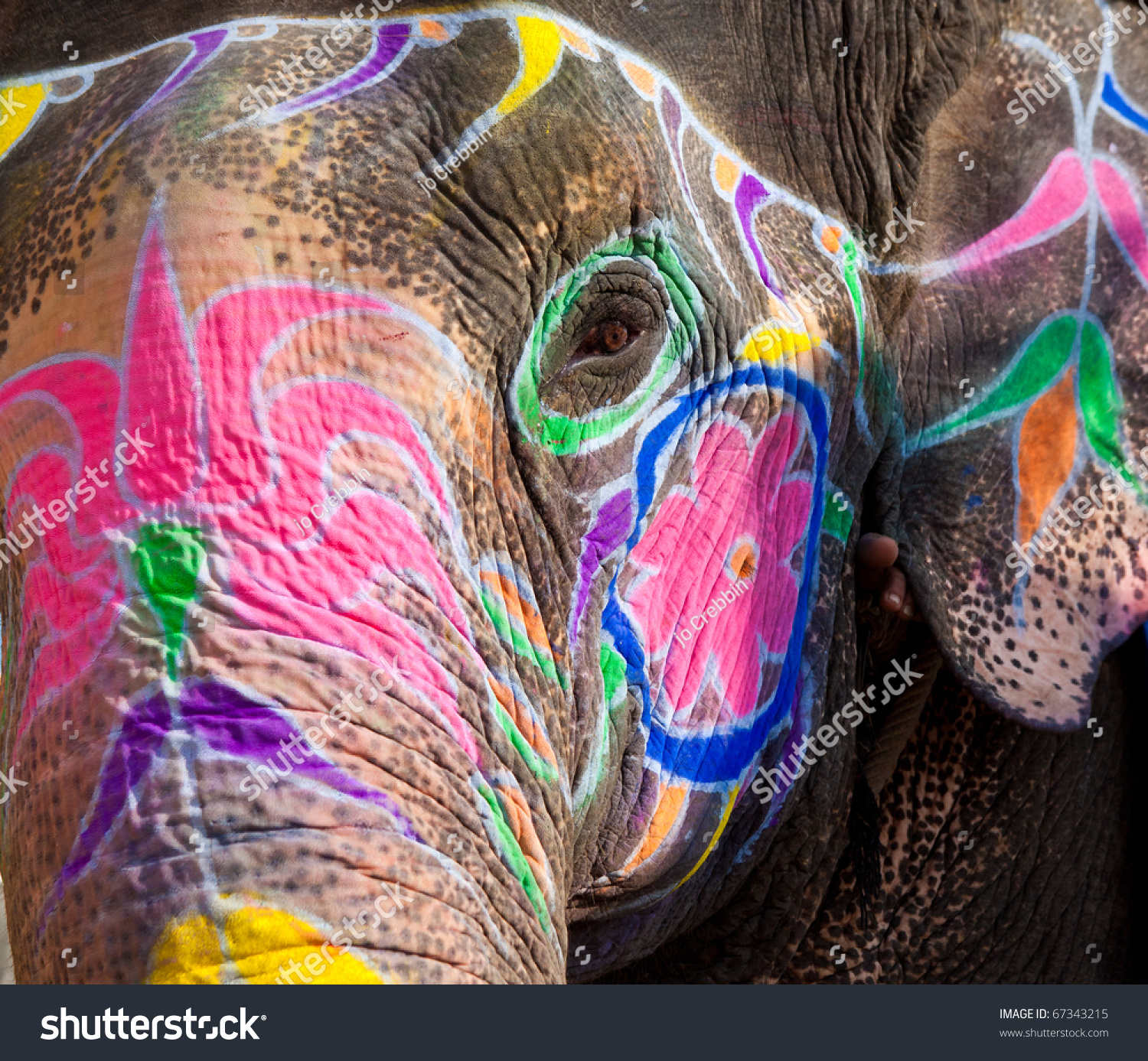 painted face india elephant new delhi stock photo 67343215