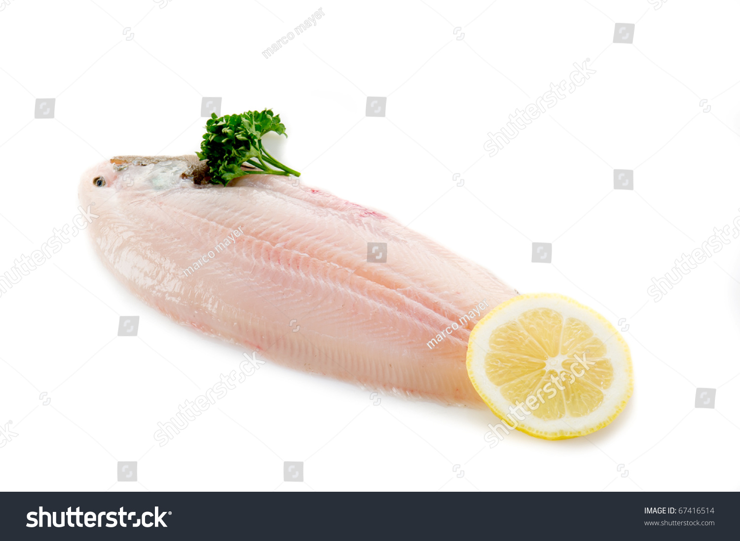 Sole fish ready to cook stock photo 67416514 shutterstock for How to cook sole fish