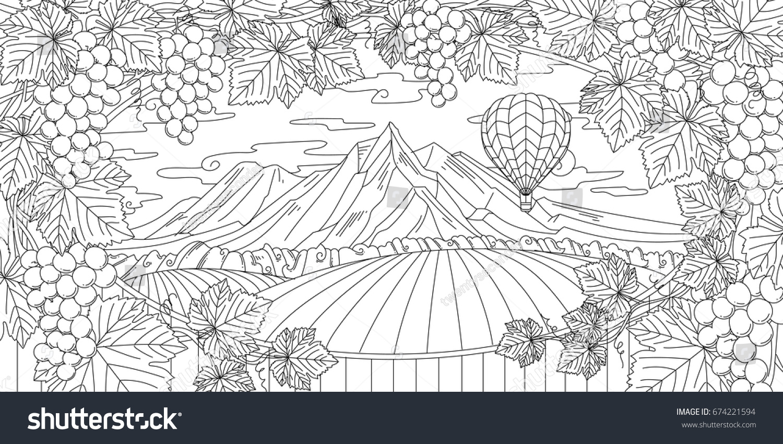 Adult Coloring Illustration Of New Zealand Vineyard