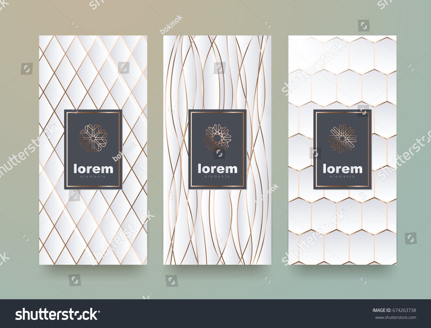 Vector Set Packaging Templates Different Texture Stock Vector ...