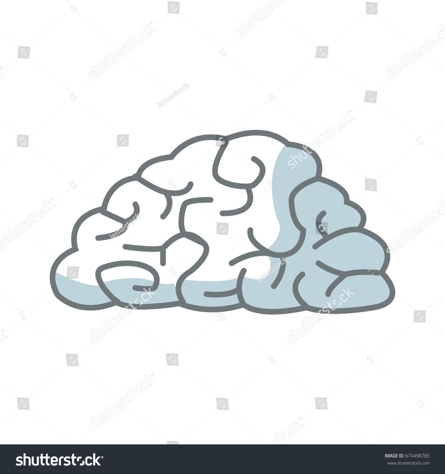 Human Brain Organ Health Memory Anatomy Stock Vector 674498785 ...